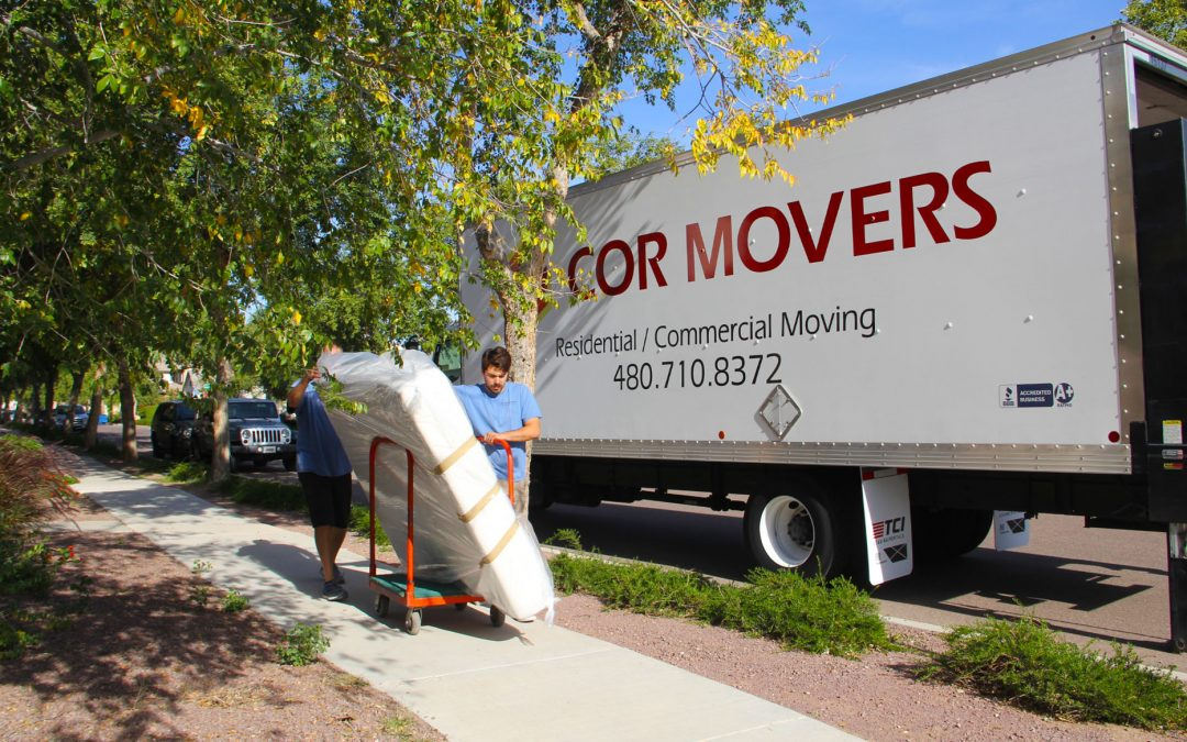 Mishaps During House Move